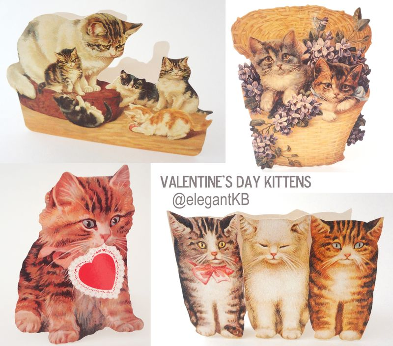 Ebay-Valentines-Cats-Pictures-001